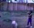 Αστεία Σκυλάκια (Βίντεο)